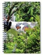 Cow Statue Spiral Notebook