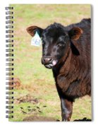 Cow Tongue Spiral Notebook