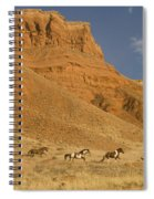 Cowboys Chasing Horses Spiral Notebook