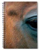 Cowgirls Heart Spiral Notebook