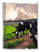 Cows At Sunset Bordered Spiral Notebook
