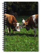 Cows Nuzzling Spiral Notebook