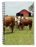 Cows8939 Spiral Notebook