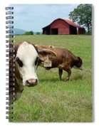 Cows8986 Spiral Notebook