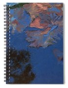 Coy Koi Spiral Notebook