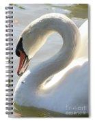 Coy Swan Spiral Notebook