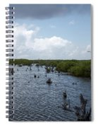 Ominous Clouds Over A Cozumel Mexico Swamp  Spiral Notebook