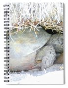 Cozy Burrow Spiral Notebook
