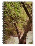 Cozy Stream In American Fork Canyon Utah Spiral Notebook