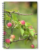 Crab Apple Fruit Spiral Notebook
