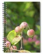 Crab Apples Spiral Notebook