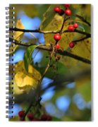 Crab Apples Leaves 6498 Spiral Notebook