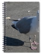 Crab Plate Spiral Notebook