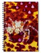 Crab Underwater Spiral Notebook