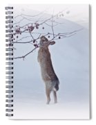 Crabapple Bunny Spiral Notebook