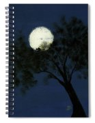 Cradling The Moon Spiral Notebook