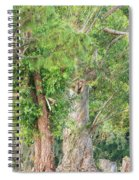 Craggy Tree For Will Spiral Notebook