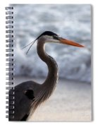 Crane By The Sea Spiral Notebook