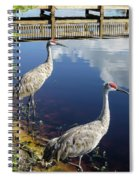 Cranes At The Lake Spiral Notebook