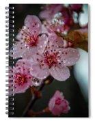 Crapabble In The Rain Spiral Notebook