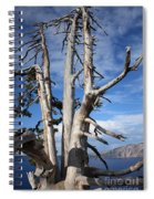 Crater Lake Tree Spiral Notebook