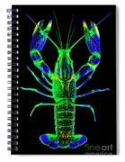 Crawfish In The Dark - Bluegreen Spiral Notebook