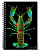Crawfish In The Dark - Orivibsat Spiral Notebook