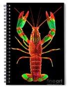 Crawfish In The Dark - Rouillegreen Spiral Notebook