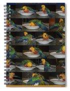Crayolas Bath Time Spiral Notebook