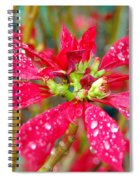 Crazy Dewy Red Flower Spiral Notebook