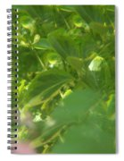 Crazy Floral Two  Spiral Notebook