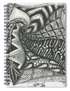 Crazy Spiral Spiral Notebook