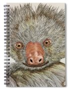 Crazy Two Toed Sloth Spiral Notebook
