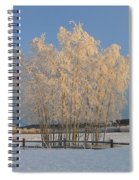 Creamer Field Spiral Notebook