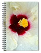 Creamy Hibiscus With Rain Drops Spiral Notebook