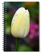 Creamy Pale Lemon Tulip Spiral Notebook