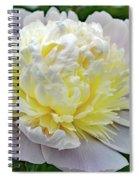 Creamy Petals - Double Peony Spiral Notebook