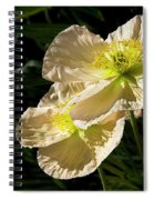 Creamy Poppies Spiral Notebook