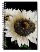 Creamy Sunflowers Spiral Notebook
