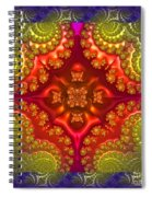 Creative Energy Mandala Spiral Notebook