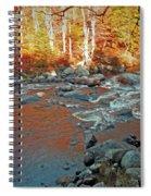 Creek 5  Spiral Notebook