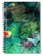 Creek Bed Spiral Notebook
