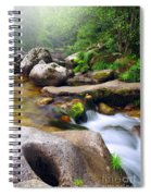 Creek Spiral Notebook