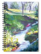 Creek Flow Spiral Notebook
