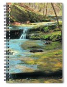 Creek In Dappled Light At Don Robinson State Park 1 Spiral Notebook