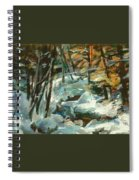 Creek In The Cold Spiral Notebook