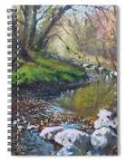 Creek In The Woods Spiral Notebook