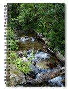 Creek On Mt. Spokane 1 Spiral Notebook