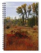 Creek Valley Beauty Spiral Notebook