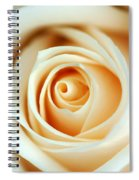Creme Rose Spiral Notebook